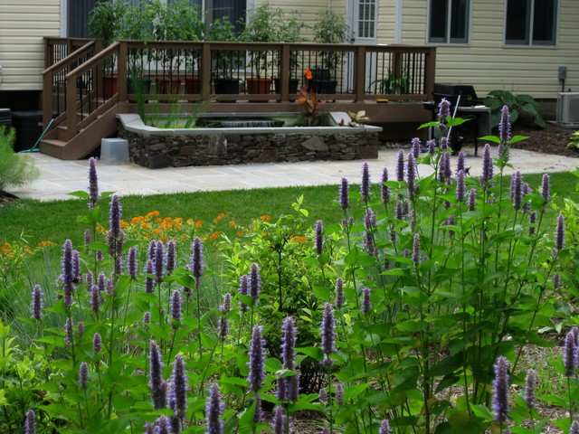 Pollinator gardens traditional-landscape