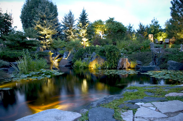 Pond and Landscape Lighting tropical-landscape