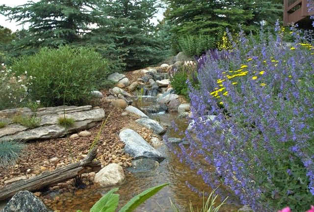 Pondless Water Falls traditional-landscape