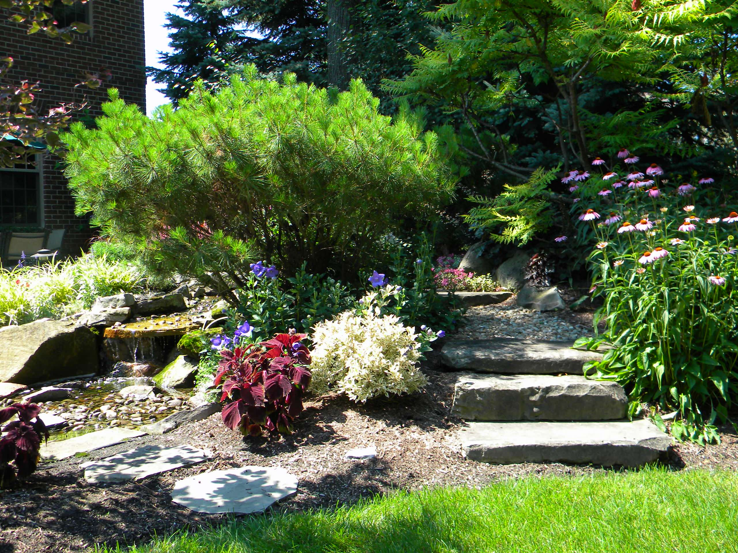 Pondless Waterfall and Stream