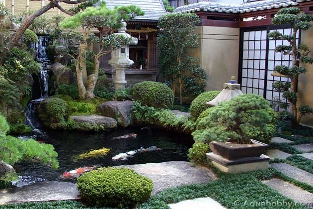 Ponds water features for Japanese garden features