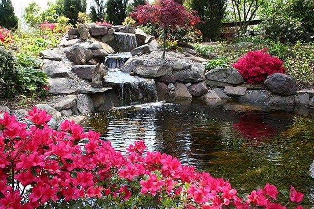 Ponds and waterfalls traditional landscape dc metro for Landscaping around koi pond