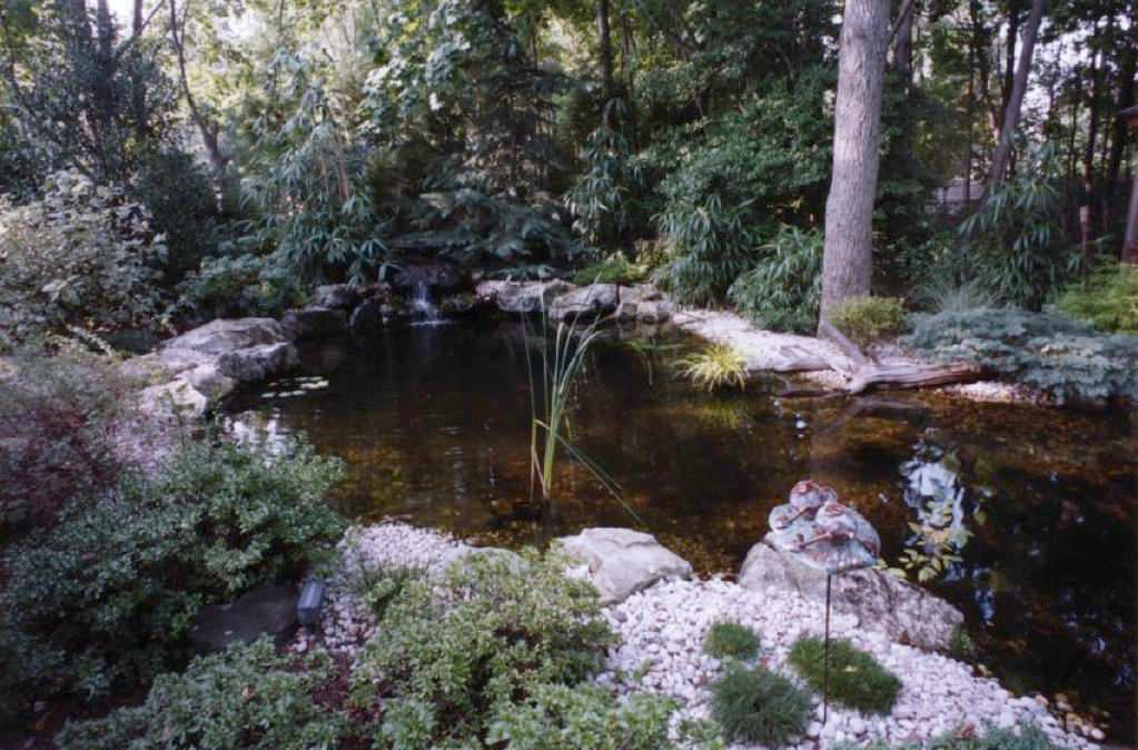 Ponds & Waterfalls For Backyards & Front Yards