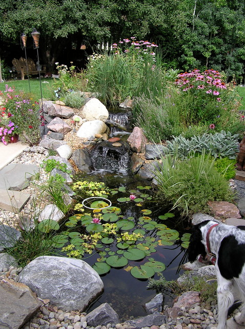 Ponds and waterfalls traditional-landscape