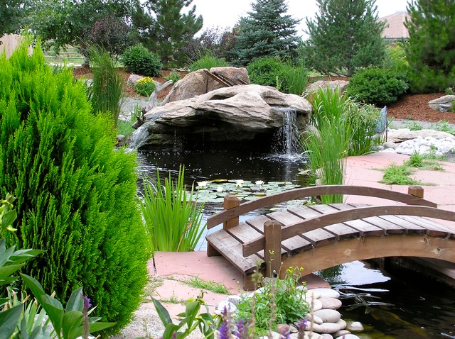 Ponds and waterfalls traditional landscape denver for Koi pool water gardens thornton