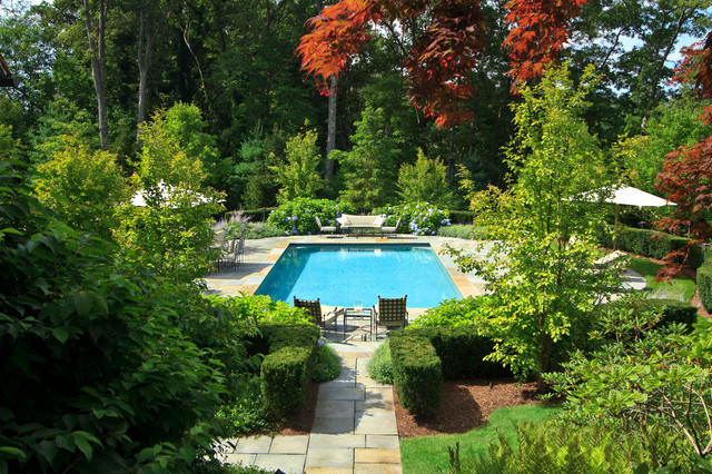 Pool & Patio traditional-landscape