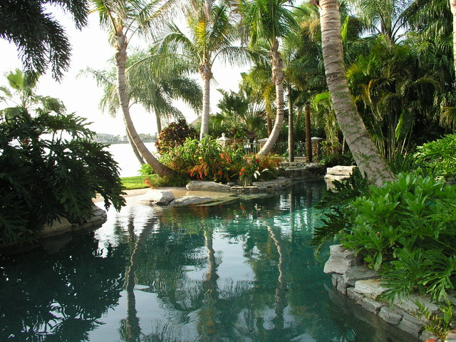 Pool design for Tropical garden design