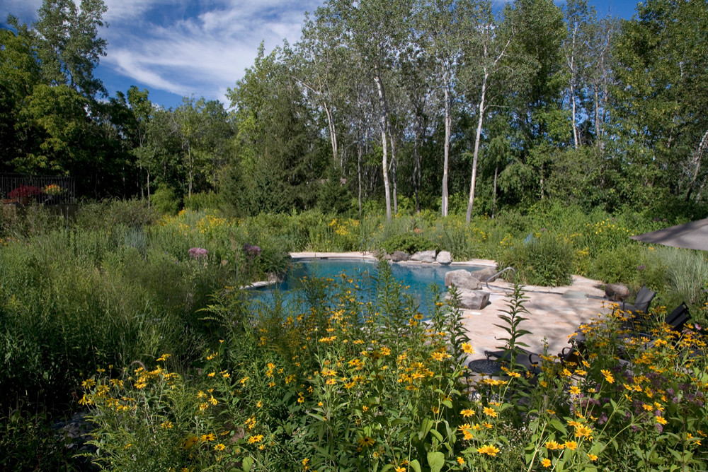Pool in the Meadow
