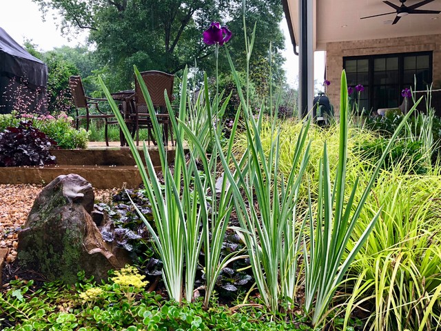 Inspiration for a contemporary landscaping in Charlotte.