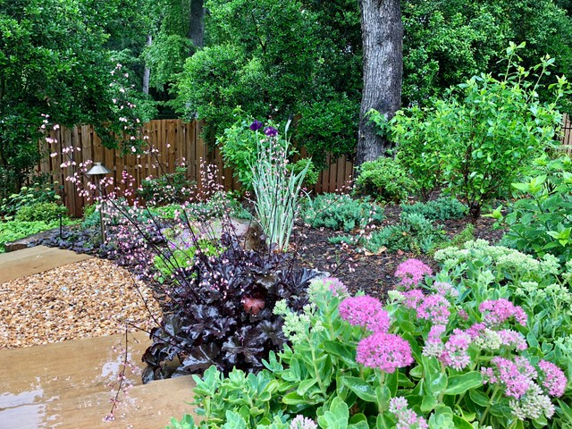Photo of a contemporary landscaping in Charlotte.