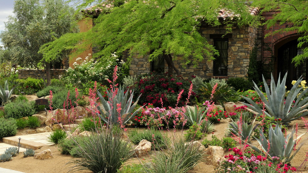 Photo of a mediterranean front yard landscaping in Las Vegas.