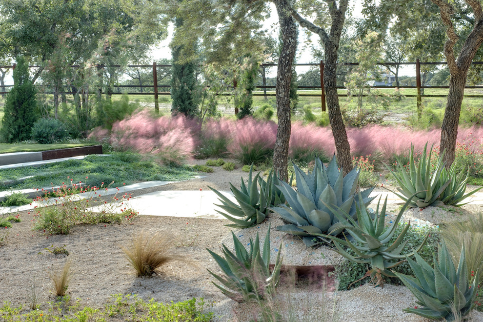 Photo of a modern drought-tolerant gravel landscaping in Austin.