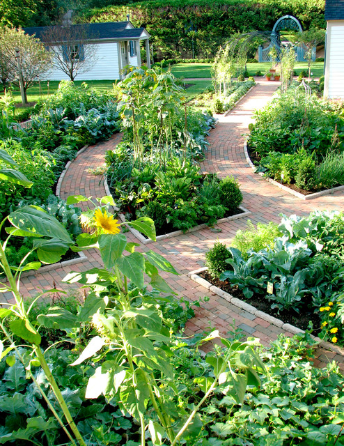 Potager garden traditional landscape chicago by the brickman group ltd - Decorative vegetable garden ideas stylish green ...