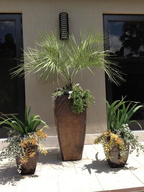 Tropical Landscape Design Ideas