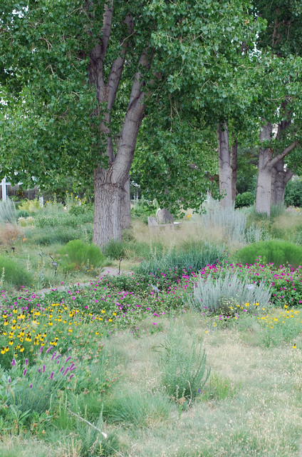 prairie garden at denver botanic gardens jocelyn h chilvers img~21c1713000b78781 4 8307 1 76792ed - Fall Plant & Bulb Sale Denver Botanic Gardens September 27