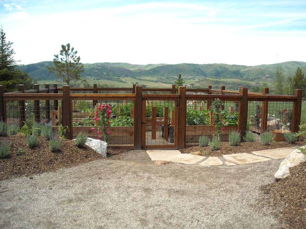 Photo of a traditional vegetable garden landscape in Denver.