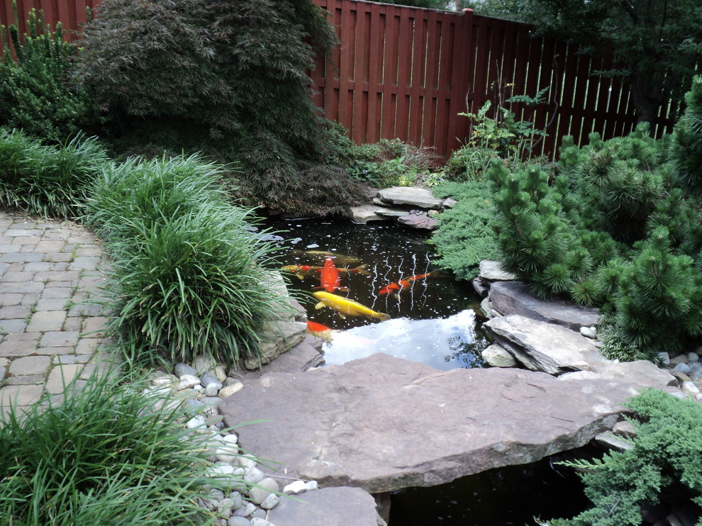 This is an example of a mid-sized asian partial sun backyard stone water fountain landscape in DC Metro.