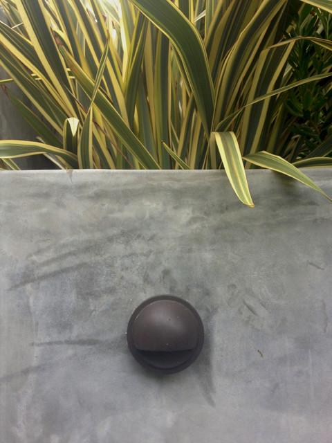 Princeton Avenue, Echo Park contemporary-landscape