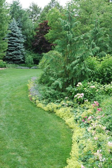 Хвойные растения в саду: Выбор и применение