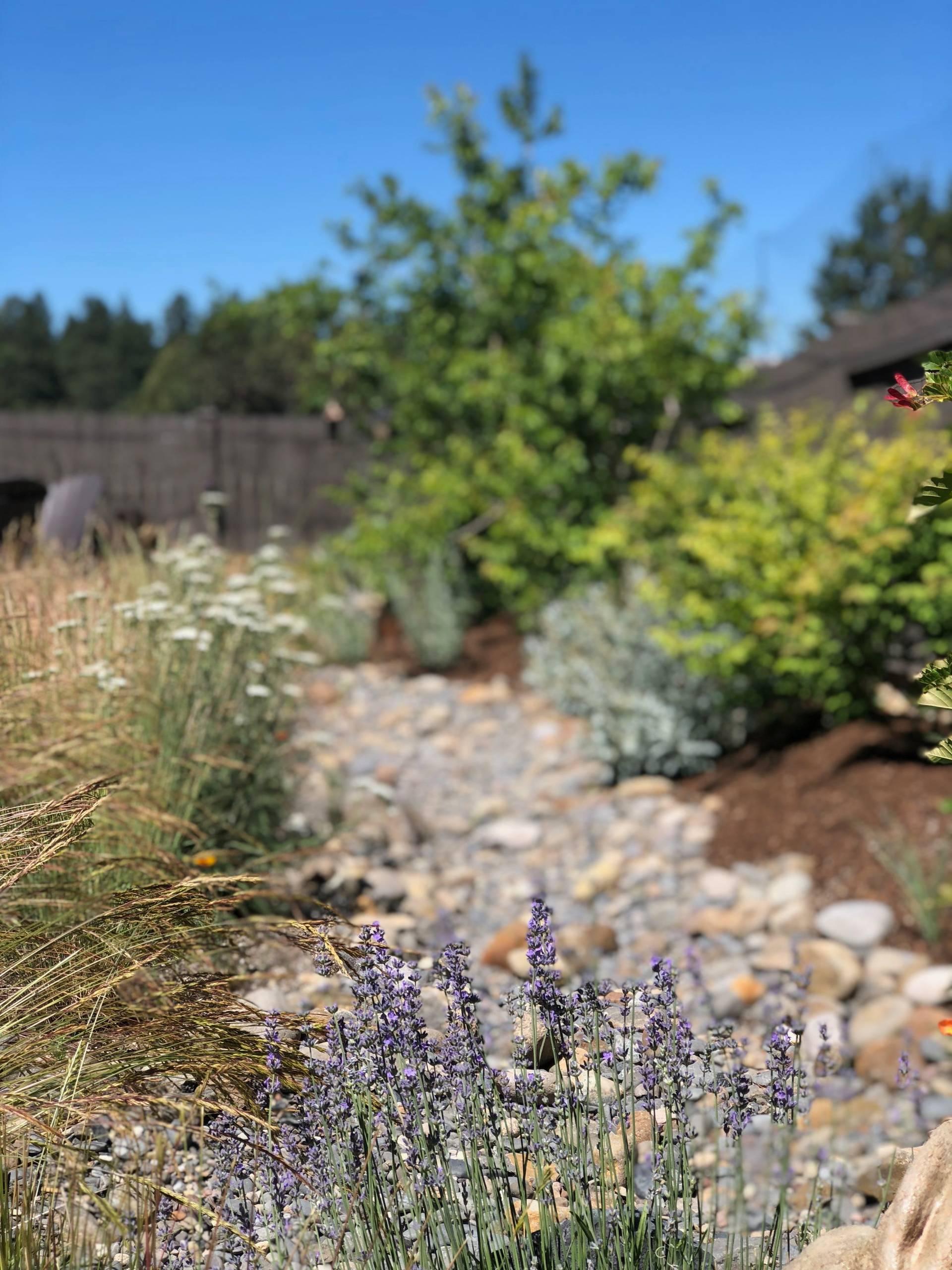 Private Botanical Garden - Old Farm District, Bend, Oregon