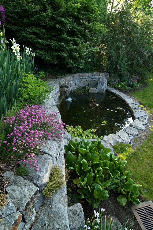 I want to build a small backyard pond water feature we 39 re for Garden design features
