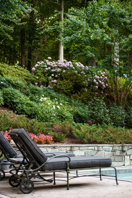 Private Pool Deck Traditional Landscape Dc Metro