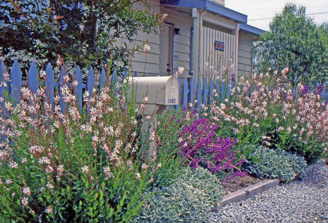 traditional exterior by elemental design group - Front Yard Cottage Garden Ideas