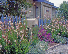 Coastal Cottage Garden traditional-exterior