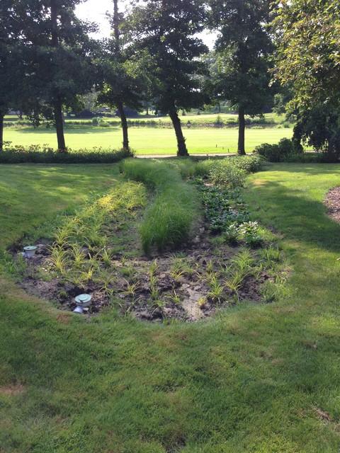 Rain Garden in Michigan City, Indiana traditional-landscape