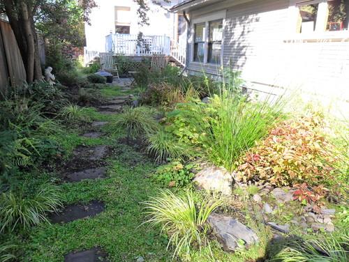 7 design tips for a rain garden leaffilter for Home rain garden design