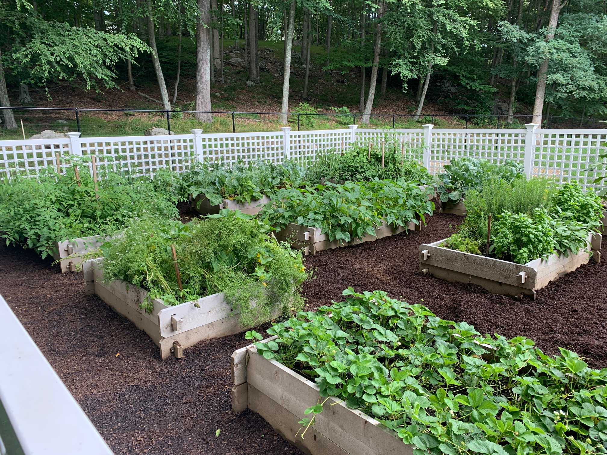 """""""Raised and Traditional Vegetable Gardens"""" Herb and Flower Gardens"""