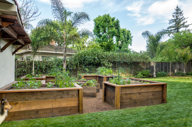 Raised Bed Vegetable Garden Design garden design with benefits of planting a raised bed vegetable garden easy food with nice Garden Design With Raised Bed Vegetable Garden Traditional Landscape San With Backyard Playground Ideas From Houzz