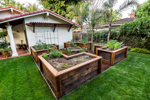This yard has some interesting and well designed raised garden beds. These beds are so high, that it reduced the effort of maintaining the crops significantly.