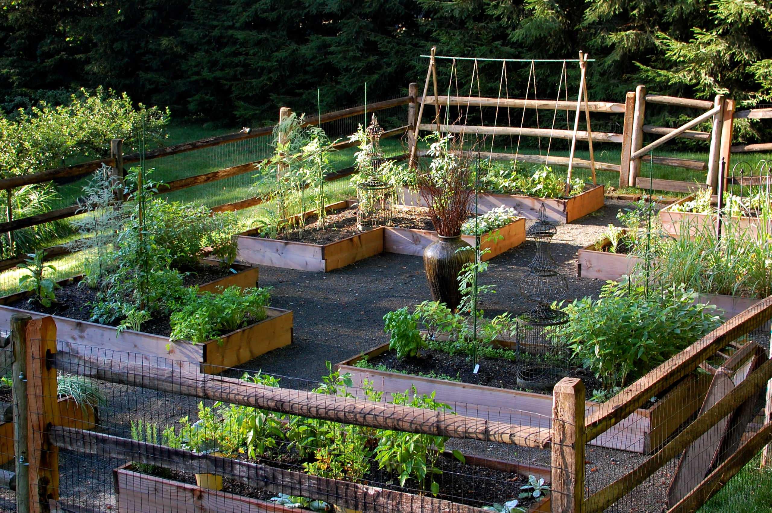 Raised Bed Vegetable Garden   Klassisch   Garten   New York   von ...