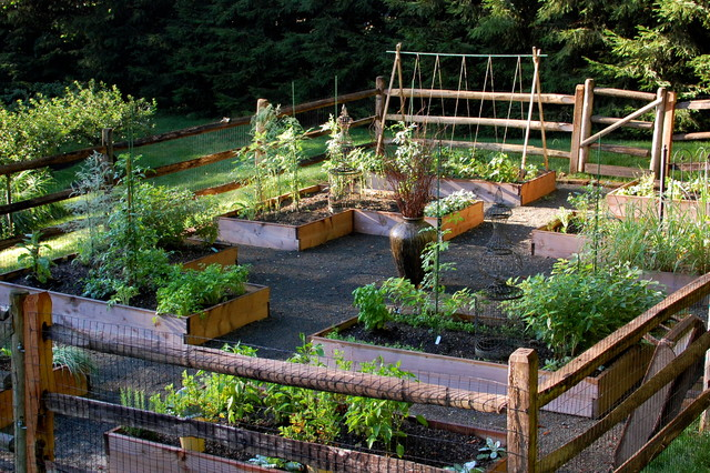 Raised bed vegetable garden traditional landscape for Home garden design houzz