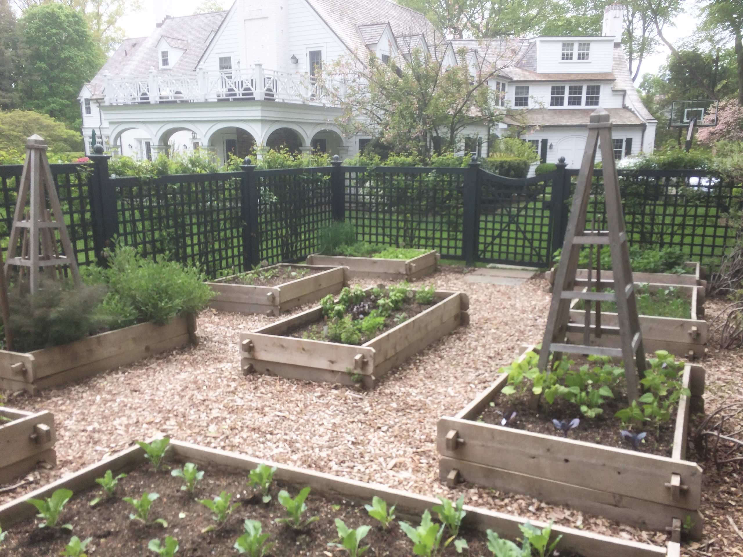 Vegetable Garden - Designed, Built and Maintained by Peter Atkins and Associates, LLC