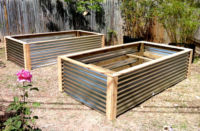 Raised vegetable beds contemporary landscape austin by elizabeth mcgreevy for Corrugated metal raised garden beds