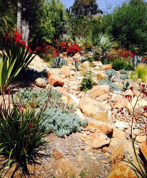 Rancho Santa Fe Landscape Gallery C H Gardens