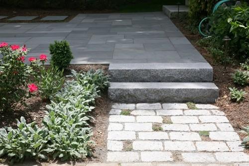 Random thyme pockets in granite cobble paving
