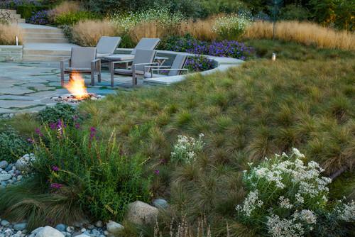 Backyard Hardscape and Landscape