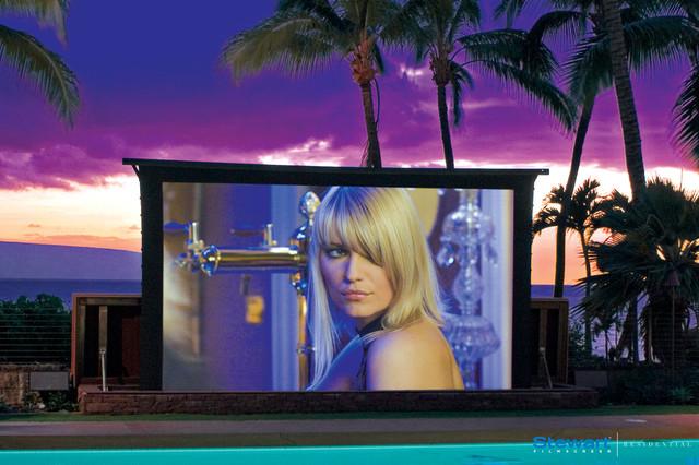 Rear-end projection Starglass TVs contemporary-landscape