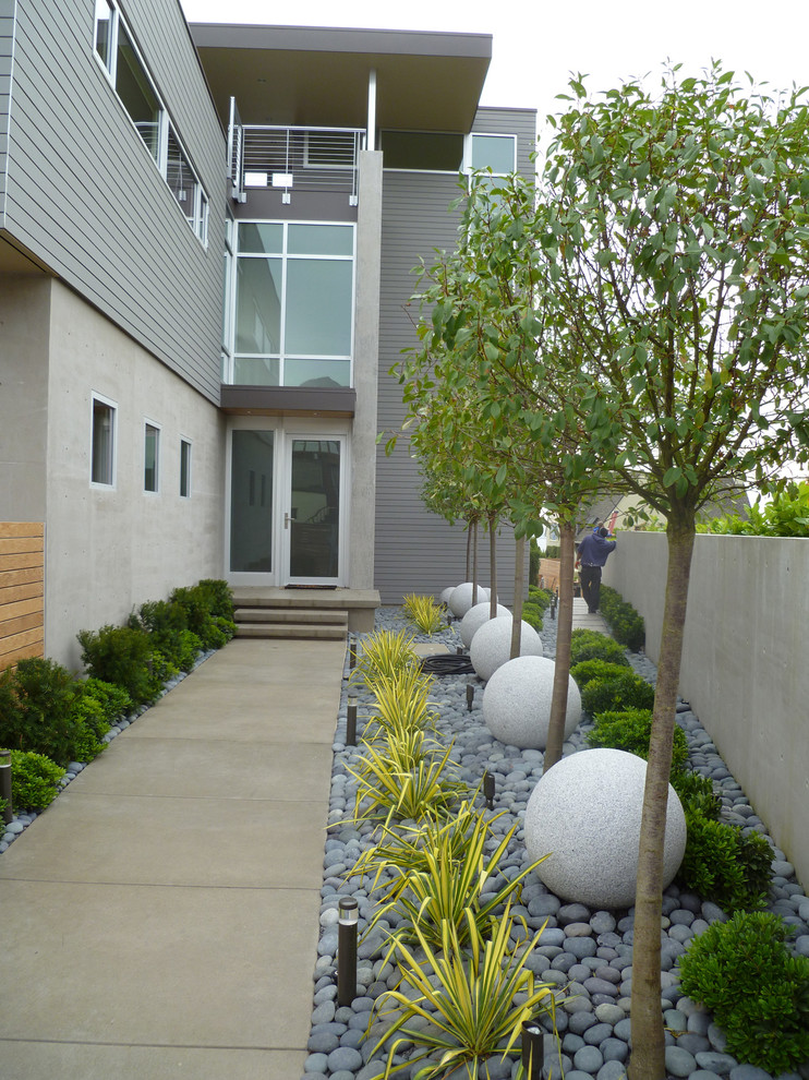 Photo of a contemporary landscaping in Seattle.
