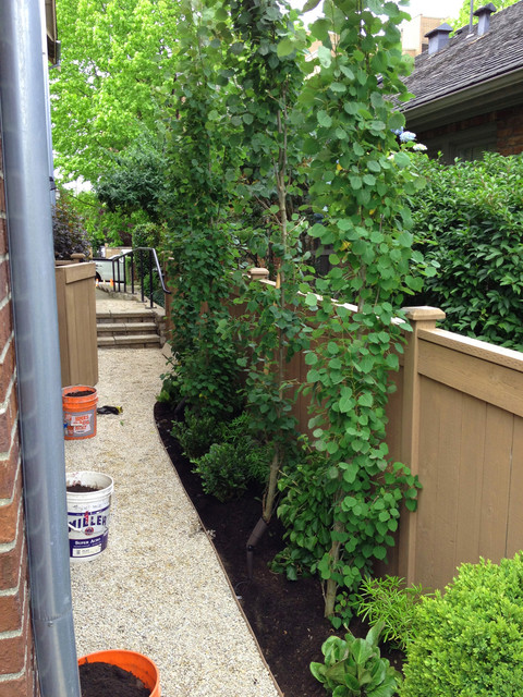 Recent Projects - Queen Anne Townhome traditional-landscape