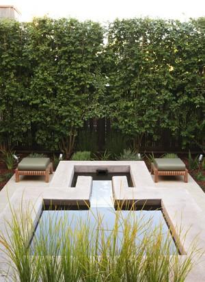 Design ideas for a contemporary landscaping in San Francisco.
