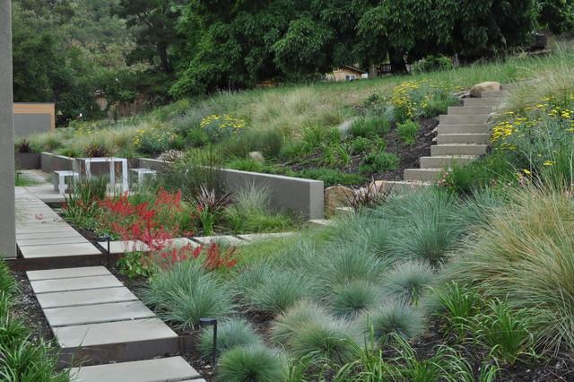 Regional California Landscape landscape