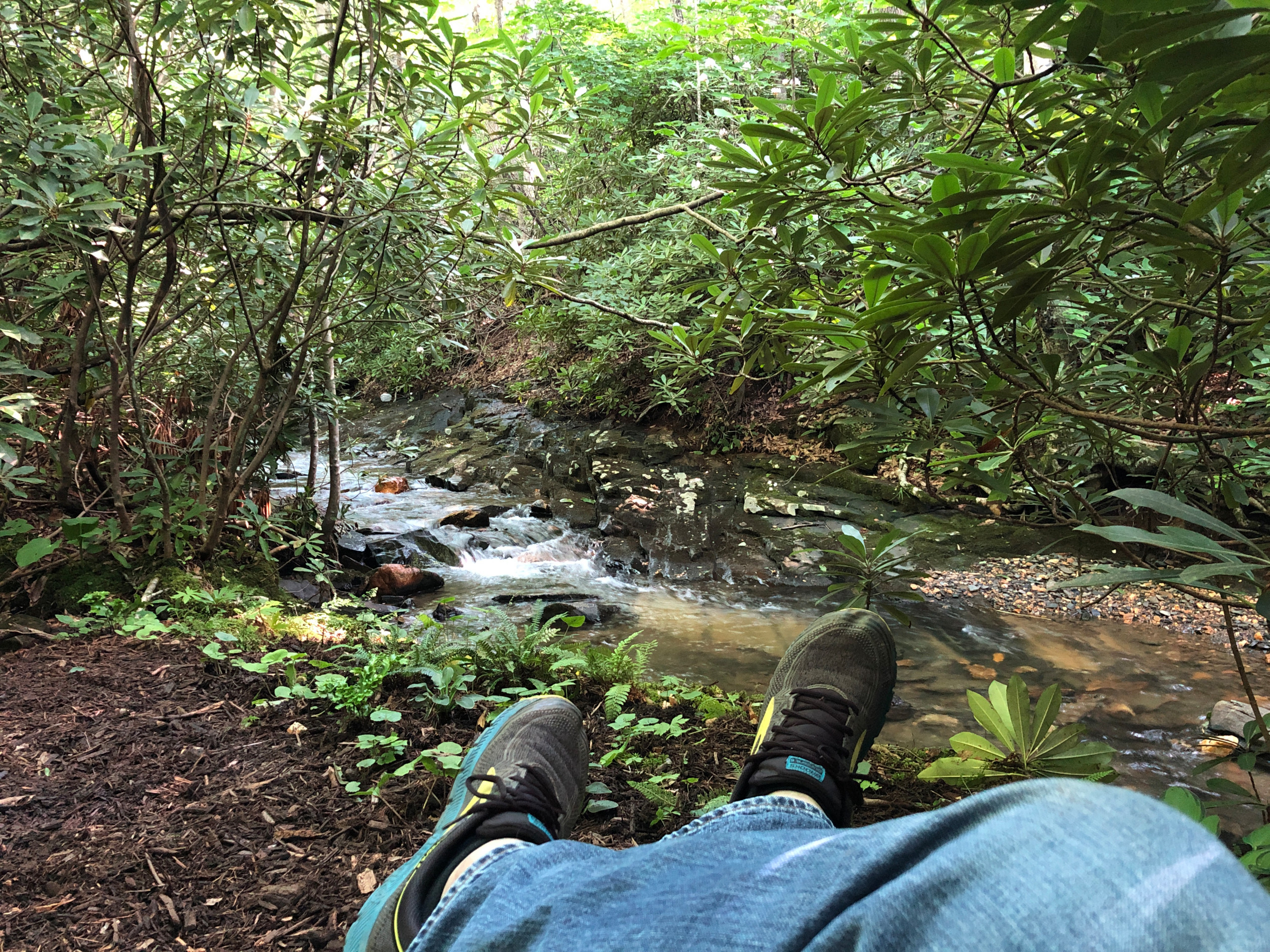 Relaxing by the rapids.