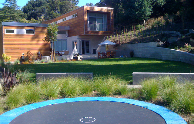 Remick1 contemporary landscape san francisco by for San francisco landscape architecture