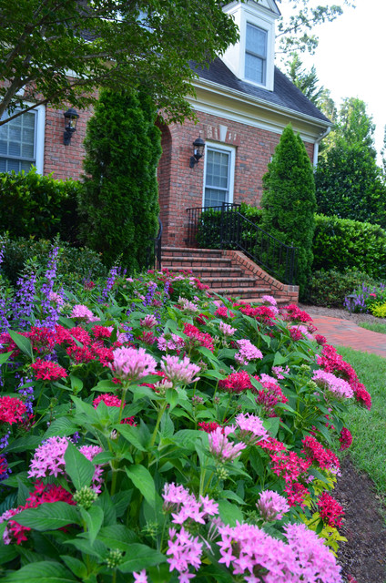 Residence in Cary traditional-landscape
