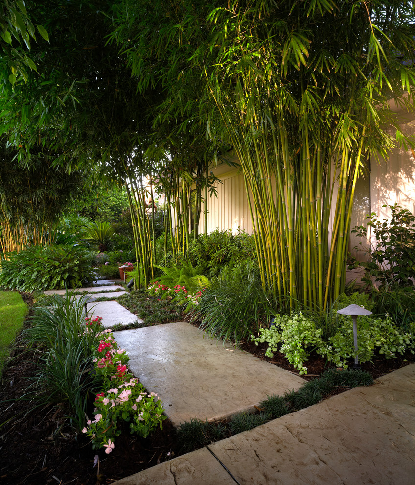 This is an example of a tropical landscaping in New Orleans.
