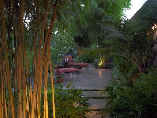 ไอเดียสวนหย่อม 01 Tropical Garden